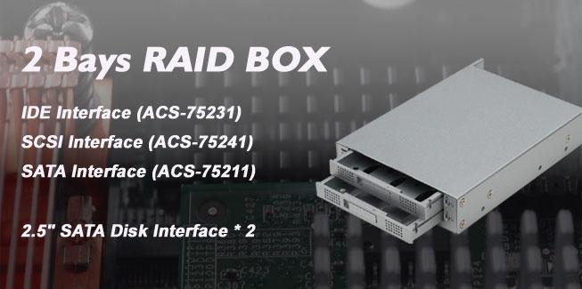 2bay-raid-box.jpg